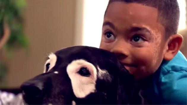 Rare Skin Condition Ignites Special Relationship With Boy and Dog