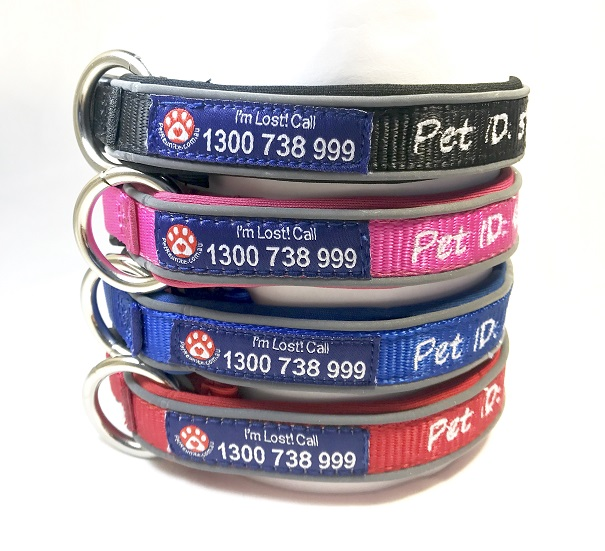 Dog Collars for Small Dogs